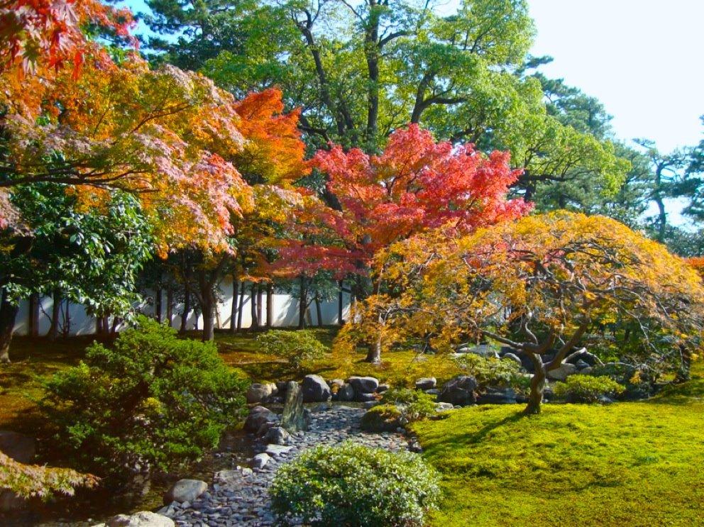Kyoto Gyoen