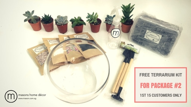 Free Terrarium Kit for Package #2 - 1st 15 Customers Only