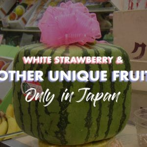 Strawberry Spa: 5 Unique Fruits of Japan